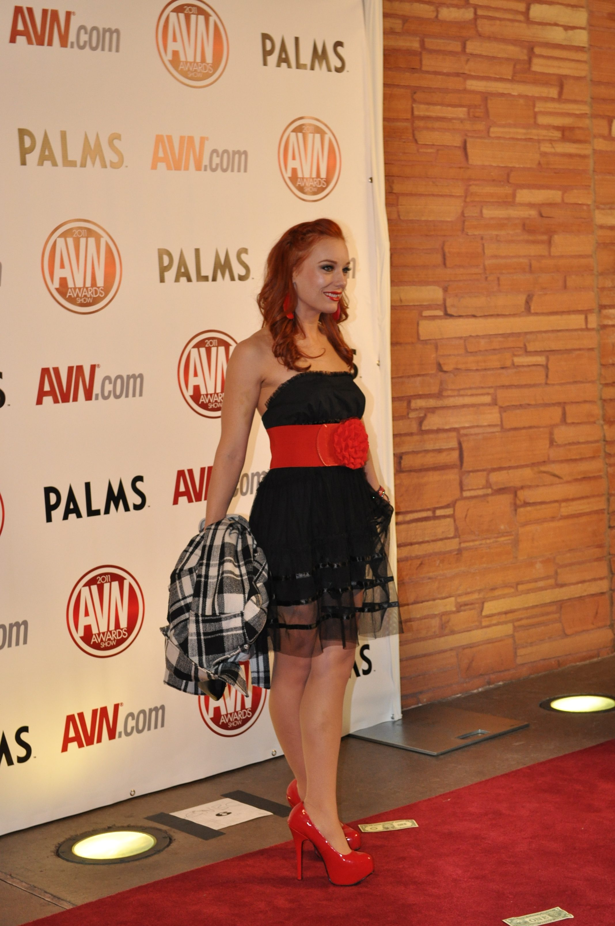 Dani Jensen at the 2011 AVN Awards