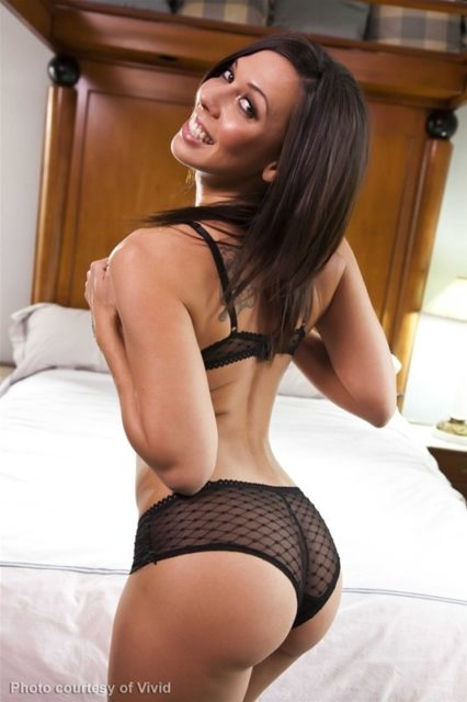 Top big ass pornstars XXXBios - Big ass pornstar Rachel Starr pics