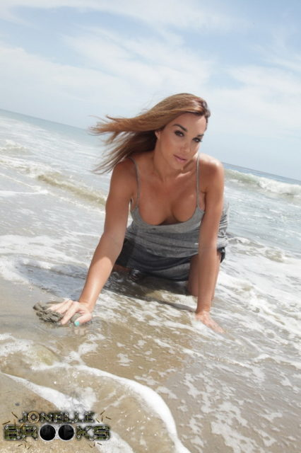 Jonelle Brooks XXXBios - TS Jonelle Brooks on the beach in a sexy grey dress - Sexy tgirl Jonelle Brooks porn pics