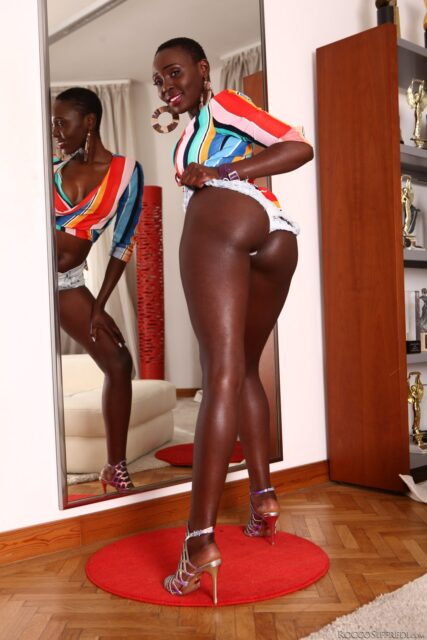 Zaawaadi XXXBios - Hot all natural Kenyan black pornstar Zaawaadi shows off her natural tits and big ass bubble butt booty in sexy cropped striped top and booty shorts - Rocco's Intimate Castings 40 Evil Angel Zaawaadi porn pics sfw