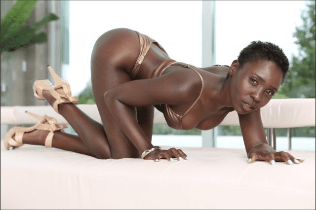 Zaawaadi XXXBios - Hot all natural Kenyan black pornstar Zaawaadi shows off her natural tits and big ass bubble butt booty in sexy gold bikini, sarong, sun hat, sunglasses and high heels - My Name Is Zaawaadi Evil Angel Rocco Siffredi Films Zaawaadi porn pics sfw